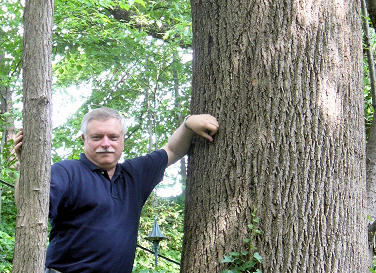 Doug, standing next to the trunk of an oak about 36 inches in diameter